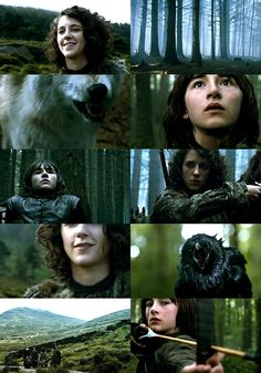 Bran and Meera (Game of Thrones)