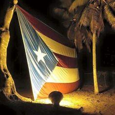 Mi Bandera! Puerto Rico! Puerto Rican Flag!