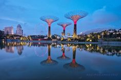 """Gardens by the Bay, Singapore's premier urban outdoor recreation space right next to Marina Bay Sands, unveiled a new attraction last month – a cutting-edge horticultural mega project featuring 18 towering solar-powered """"supertrees"""" and climate-controlled biomes."""