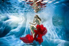 30 Mesmerizing Underwater Photography For Inspiration