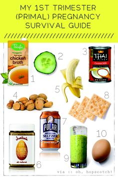 1st trimester primal pregnancy survival guide. Would be good snacking for someone with the flu or a could, too!