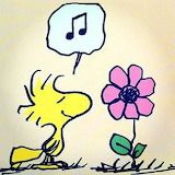 Woodstock singing its spring? Peanuts Gang, Peanuts Cartoon, Charlie Brown And Snoopy, Peanuts Characters, Cartoon Characters, Snoopy Und Woodstock, Woodstock Bird, Woodstock Music, Hello Kitty Imagenes