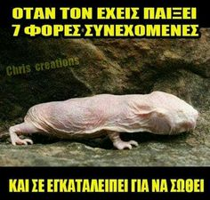 Best Quotes, Funny Quotes, Funny Memes, Jokes, Funny Shit, Funny Greek, Funny Clips, Funny Cartoons, Laughter
