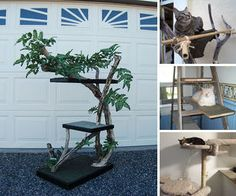 Cat trees are an easy and fun thing to make, as you can utilize scrap wood and leftover materials to make something your feline friends will love.  I ...