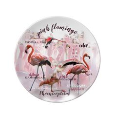 Pink Flamingo Typography   Customized Plate - Porcelain