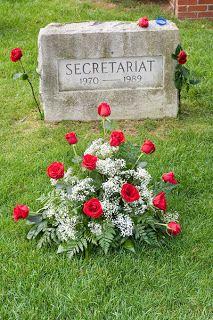 Secretariat- My horses grandfather <3