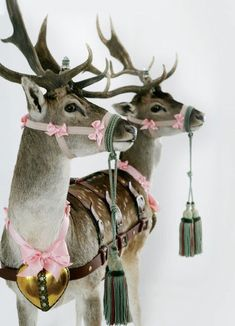 What could be prettier than a cottage style Christmas? Read on and be inspired!       reindeer?          vintage ornament wreath          a...