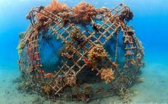 Steel-coral-reef-2