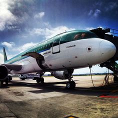 Aer Lingus on Instagram Civil Aviation, Airplanes, Irish, Aircraft, Commercial, Girly, Photo And Video, History, Videos
