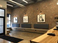 Clinic Interior Design, Clinic Design, Veterinarian Office, Veterinary Receptionist, Waiting Room Design, Waiting Area, Daycare Design, Office Waiting Rooms, Vet Office