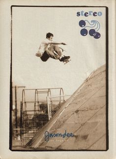 Jason Lee  skateboards