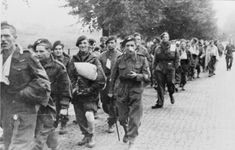 British paratroops being marched away by their German captors - Operatie Market Garden - Wikipedia