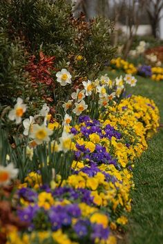 Like the bulbs tucked behind the flowers.