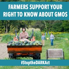 Take action now to stop the DARK Act so each state can continue making their own mandates on food labeling, including the right to label GMO's. #StoptheDARKAct