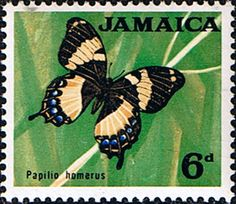 Homerus swallowtail or Jamaican giant swallowtail (Papilio homerus) .Butterfly Postage Stamps from Jamaica 1964
