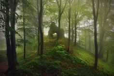 Burgruine © Kilian Schönberger