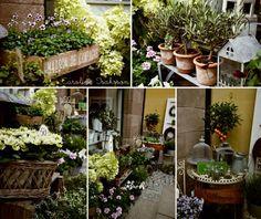 1000+ images about Flower shop on Pinterest   Flower shops ...