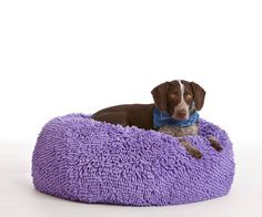 """""""My dog LOVES this bean bag! He lounges on it most of the day and no longer sleeps in the bed with me at night--he chooses his bean bag!"""" #customerreview"""