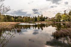 Guten Morgen! Falls Ihr noch ein Ausflugsziel für dieses Wochenende sucht, probiert es doch einmal mit Waldsieversdorf, inkl.…