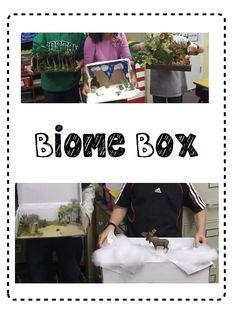 Biomes of the World Biome Box Activity