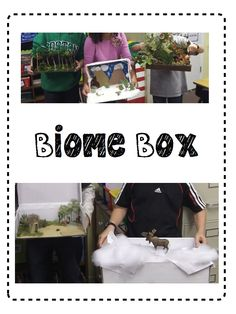 Biomes of the World Biome Box Activity