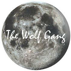 The Wolf Gang - handmade wood and polymere jewellery from Sheffield