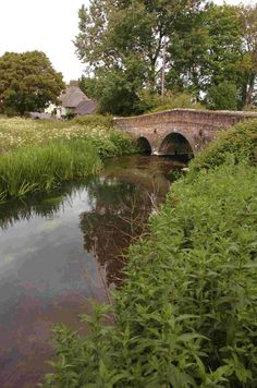 Award recognition for River Frome enhancement project (From Dorset Echo)