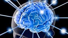 Cérebro precisa de um a cinco dias para se reajustar a horários após as férias