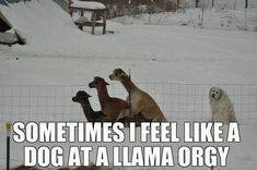 Sometimes i feel that way too...