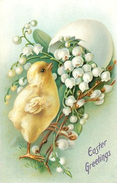 EASTER GREETINGS  chick looks up at lilies-of-the-valley, egg shell on top