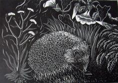 Douglas Reay. Hedgehog.