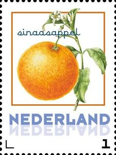 Stamp: Orange (Netherlands - Personalized stamps) (Janneke Brinkman-Salentijn-Fruits) Col:NL 2017-081