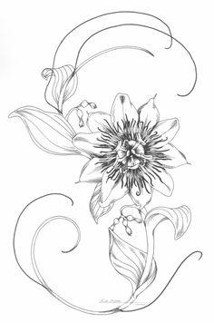 Passion flower by KatieNewbie.deviantart.com on @DeviantArt