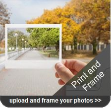 print and frame your pictures in a fast easy convenient way that will save