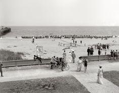"Shorpy Historical Photo Archive :: Gold Coast: Florida circa ""The beach at Palm Beach. Palm Beach Florida, Old Florida, West Palm Beach, Miami Florida, Vintage Beach Photos, Vintage Photographs, Old Pictures, Old Photos, Shorpy Historical Photos"
