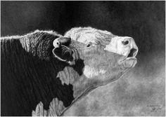 Pencil Art Gallery - Pencil Artist Dino Cornay - Pencil Artwork