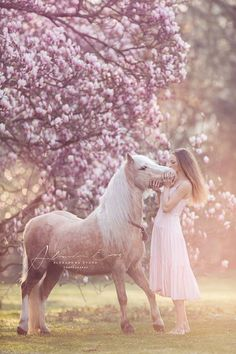 Horse like a dream, such a pretty horse with his lady in pink. Horse Girl Photography, Equine Photography, Animal Photography, Pretty Horses, Horse Love, Beautiful Horses, Friesian Horse, Palomino, Horse Photos