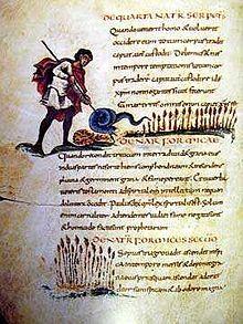 Physiologus de Berne, folio 12v- ENLUMINURE CAROLINGIENNE 4) TYPES DE LIVRES ILLUSTRES ET MOTIFS ICONOGRAPHIQUES, 15:  Le PHYSIOLOGUS DE BERNE (Reims, 825-850) est le manuscrit illustré de sciences naturelles le plus important des Physiologus. Un livre d'enseignement important pour le Moyen Age est l'œuvre de Boèce De institutione arithmetica libri II, enluminé vers 840 à Tours pour CHARLES LE CHAUVE.
