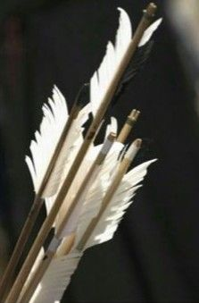 14 images about frank pins on We Heart It Save Image, Find Image, Artemis Aesthetic, Zoe Nightshade, Hunter Of Artemis, Cupid Love, Dark Souls 2, Frank Zhang, Grain Of Sand