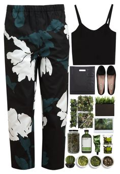 Chasing visions of our futures by annaclaraalvez on Polyvore featuring polyvore, moda, style, Marni, Dune, 3.1 Phillip Lim, Perricone MD, Tea Collection, fashion and clothing