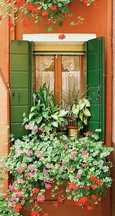From the lace curtains to the shutters and window box, this is all very charming and pretty.