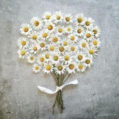 Me gusta, son margaritas, mis flores preferidas.