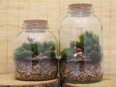 Jardim na palma da mão: Amigas reutilizam vidros para criar terrários com cenários delicados