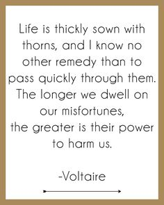 """""""Life is thickly sown with thorns, and I know no other remedy than to pass quickly through hem. The longer we dwell on our misfortunes, the greater is their power to harm us. Poetry Quotes, Words Quotes, Me Quotes, Funny Quotes, Sayings, Great Quotes, Quotes To Live By, Inspirational Quotes, Voltaire Quotes"""
