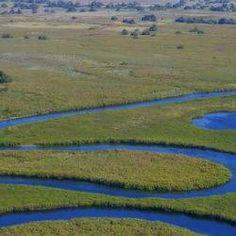 Oferta de viaje a Botsuana  Colores de Botswana y Zambia en avioneta  11 días - 10 noches  Circuito de 11 días por Botswana y Zambiia visitando Maun, la Reserva Central del Kalahari, la Reserva de Moremi, el Delta del Okavango, Kasane y Livingstone.  http://www.belydanaviajes.es/oferta/viaje/zambia/30217/colores_de_botswana_y_zambia_en_avioneta