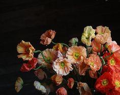 Saipua — beautiful flowers