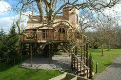 I want this tree house!