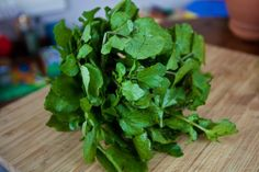 How to Grow Watercress at Home in a Container