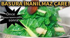 Alternative Health, Alternative Medicine, Homemade Skin Care, Homeopathy, Seaweed Salad, Celery, Remedies, Fruit, Vegetables