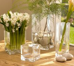 Square Vases | Pottery Barn